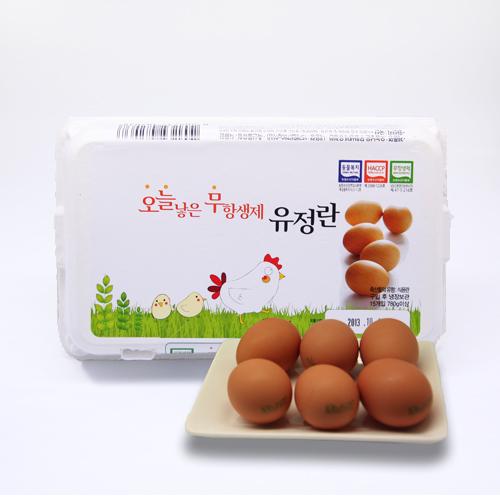 유정란(10알/원삼/국내산)
